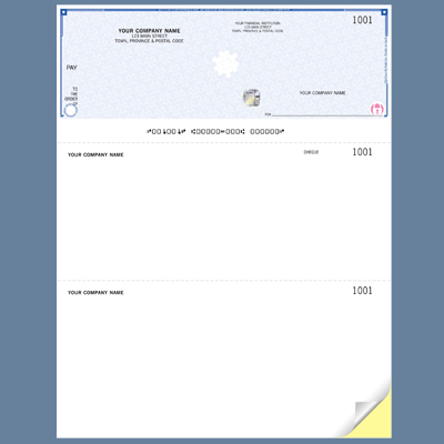 Business Computer Cheques